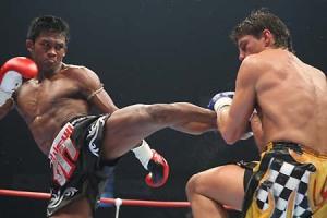 Thai Round Kick