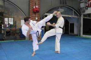 Karate mawashi geri