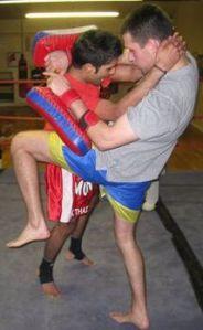 pads Muay Thai 2